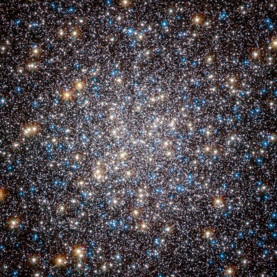 This image, taken by the Advanced Camera for Surveys on the Hubble Space Telescope, shows the core of the great globular cluster Messier 13 and provides an extraordinarily clear view of the hundreds of thousands of stars in the cluster, one of the brightest and best known in the sky.