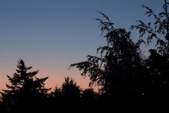 Venus and Jupiter make a handsome couple in the dawn sky over Victoria B.C. on August 18th, 2014. Photo by Gary Seronik.
